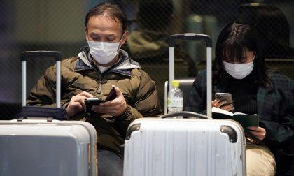 Coronavirus, sono 10 i bimbi cinesi che mancano all'appello in Polesine