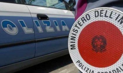 Controlli a Rovigo: ancora tante sanzioni in città