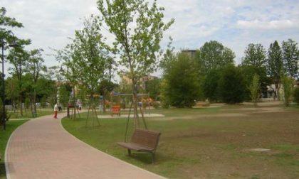 Il sindaco Gaffeo riapre tutti i parchi comunali di Rovigo