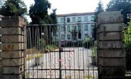Rovigo: topi al Maddalena, il Comune chiede aiuto ai cittadini