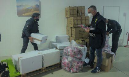 Sequestrati 16mila giocattoli irregolari, un furgone e 120 chili di ricci di mare