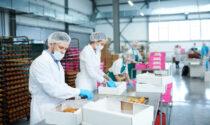 Vittime del Covid sul lavoro, Veneto virtuoso: ha il minor rischio di mortalità