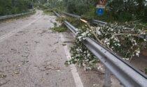 Maltempo Porto Tolle: Zaia avvia lo stato di crisi e di calamità per le attività agricole