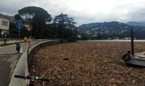 La foto shock del lago di Como sommerso da detriti dopo il maltempo
