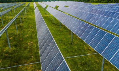 Canda, 50 ettari di suolo fertile potrebbero sfumare sotto i pannelli fotovoltaici