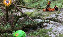 Escursionista ruzzola in una scarpata nel Bellunese finendo nel torrente