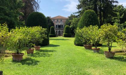 Cosa fare a Rovigo e provincia nel weekend dell'11 e 12 settembre 2021